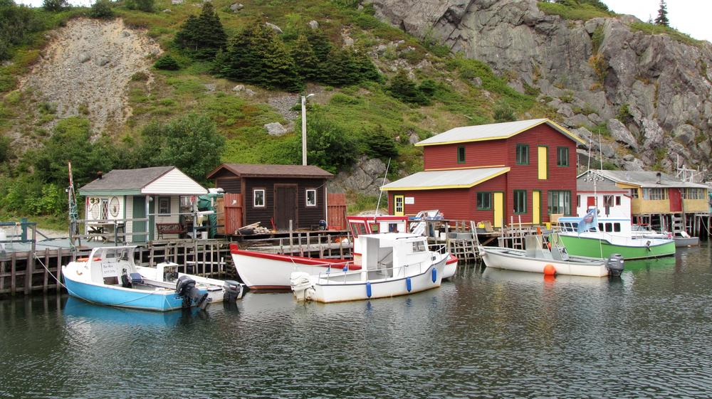 fishing houses anchored to the rock of Quidi Vidi harbour
