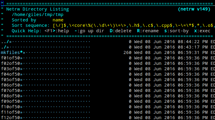 netrw file explorer interface inside Vim