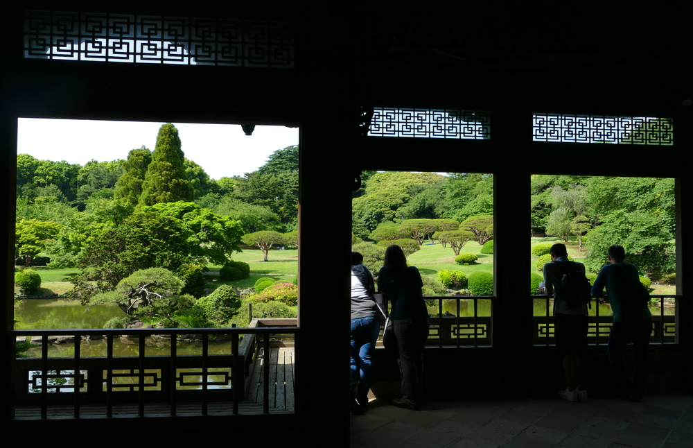 Looking out at Shinjuku-gyoen through the windows of a classical Japanese building