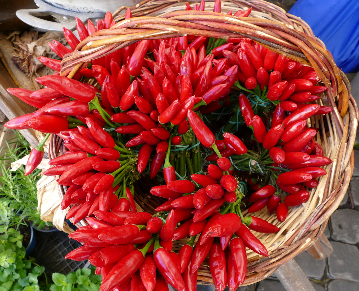A basket full of small and pointy vivid red peppers