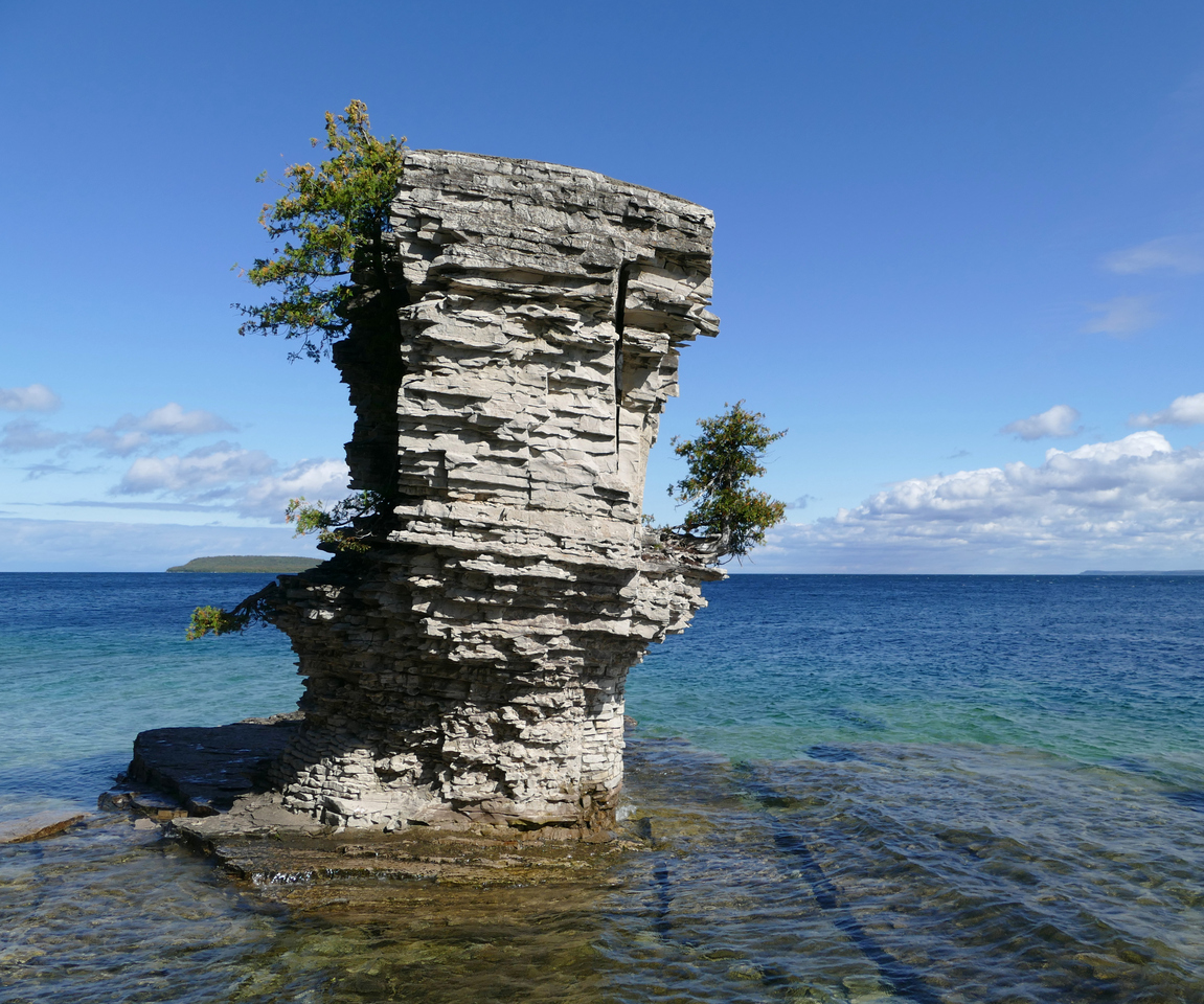 A column of rock standing in the water, with a small tree precariously attached to its side.