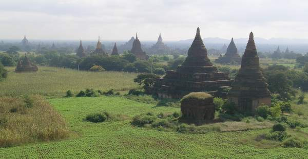 Stupas out to the hazy horizon, among fields and low shrub at Bagan.