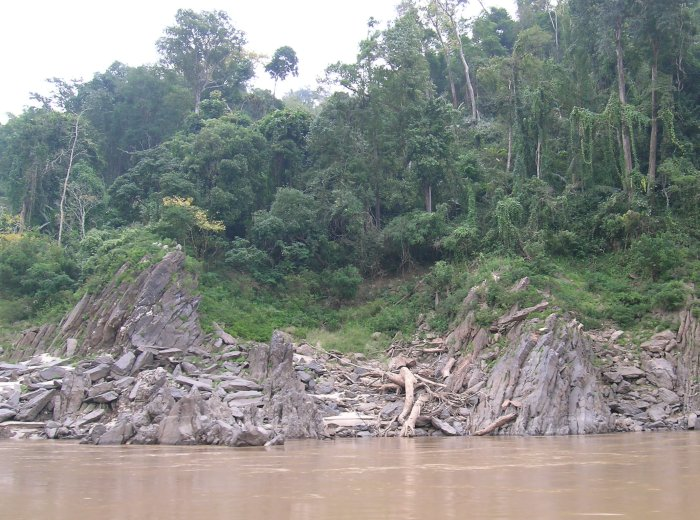 Jagged rocks and heavy forest along the edge of the muddy Mekong River.
