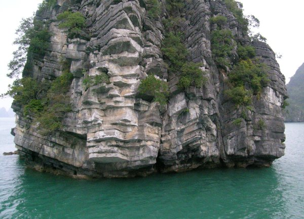 Close to the base of a karst in Halong Bay.