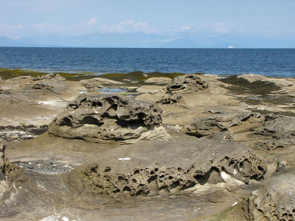 The very pitted stone beach at Newcastle Island off Nanaimo, with the sea in the background.
